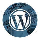 WordPress Website Design in Cincinnati, Ohio - Austin Blu